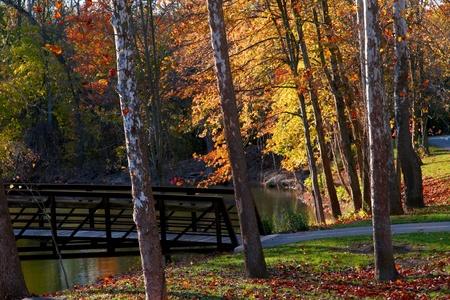 Autumn in Huron state park photo