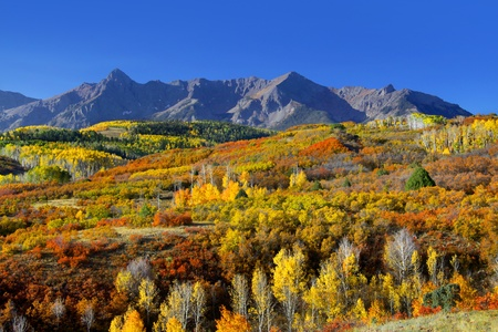 colorado: Scenic landscape of Dallas divide in Colorado