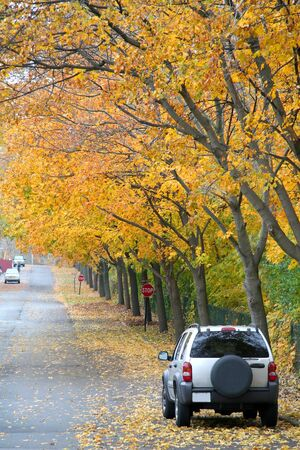 Sport utility vehicle under colorful fall trees photo