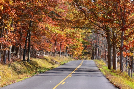 high way through colorful autumn trees