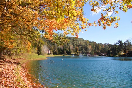 Autumn in West Virginia 版權商用圖片