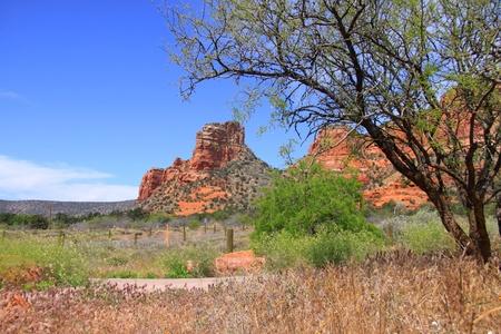 Scenic red rock mountains in Sedona, Arizona photo