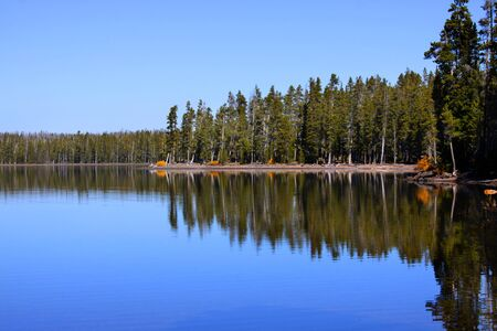 Reflections of pine trees in lake ,Shot in early morning photo