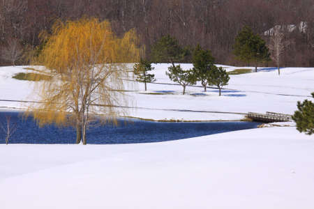 Snow on the Golf course photo