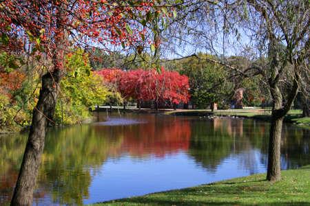 Scenic autumn landscape in Michigan state park photo