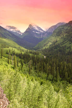 meadowland: Mountain view in Glacier national park