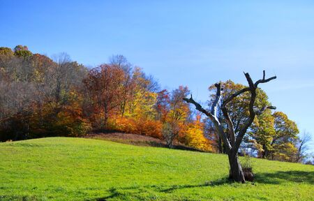west virginia trees: Scenic landscape in rural West Virginia Stock Photo
