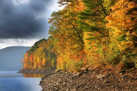 allegheny: Stormy weather in Allegheny National forest