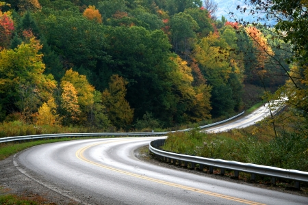 Scenic road through colorful trees in Allegheny national forest photo