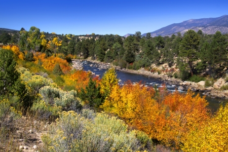 Buena Vista River in Colorado state Stock Photo - 15395467