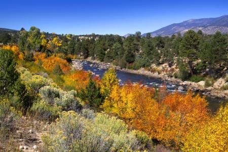 Buena Vista River in Colorado state Stock Photo - 15395467