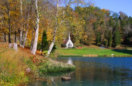 west virginia trees: Scenic landscape near Romance in West Virginia
