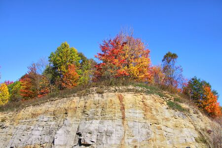 Colorful trees on the cliff  Stock Photo - 15395463