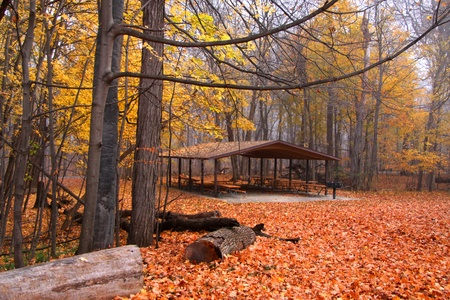 Picnic shelter in the middle of bright yellow maple leaves Stock Photo - 15764508
