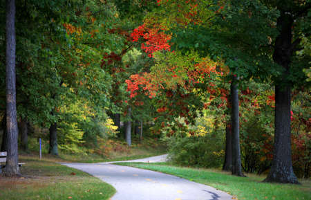 Scenic trail in early autumn time through park photo