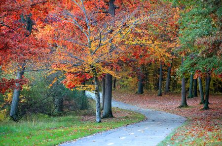 woodland scenery: Scenic bike trail in Kensington metro park near Detroit Stock Photo
