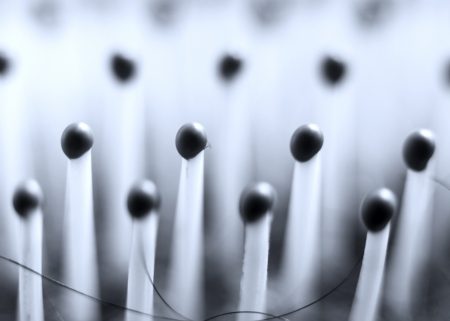 bristles: Extreme close up shot of hair brush bristles