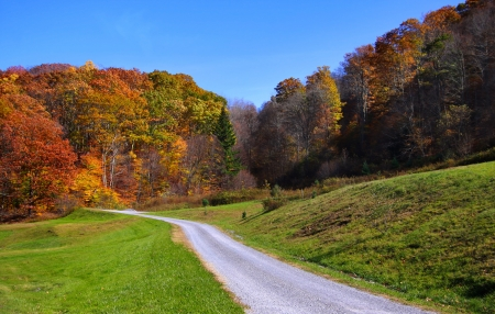west virginia trees: Rural road in West Virginia in autumn time