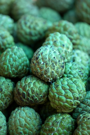 annona: Sugar Apple fruits