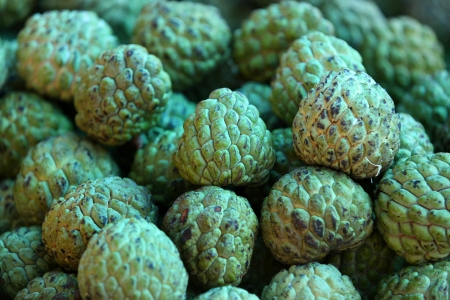 annona squamosa: Sugar Apple fruits