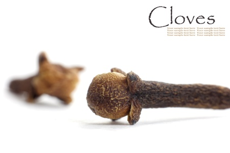 clove of clove: Two cloves isolated on white background