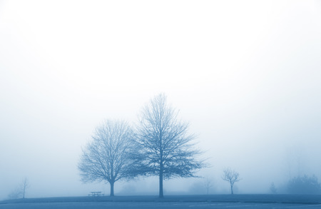 Misty morning in the winter time photo