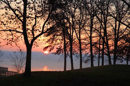 arboles frondosos: Sol rise sobre el lago