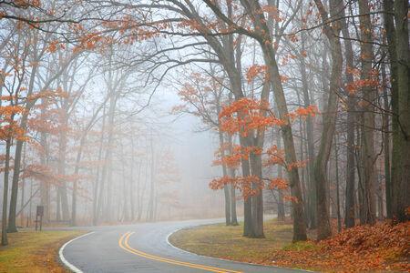 drive through: Scenic drive through the park
