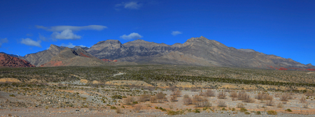 desert landscape: Desert landscape