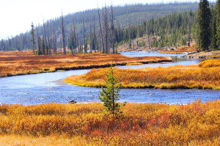 basin mountain: Yellowstone river