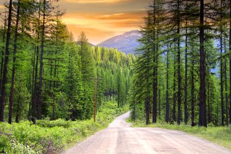 Scenic rural drive in Montana