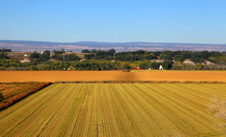 Harvested wheat fields areal view photo