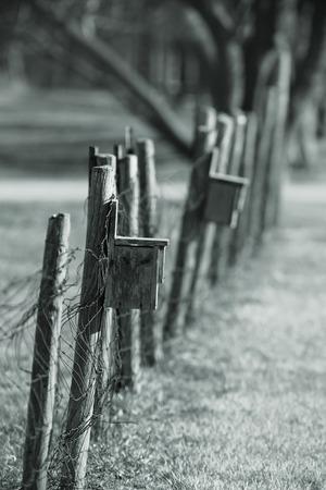 birdwatcher: Bird nest boxes on the fence  Stock Photo