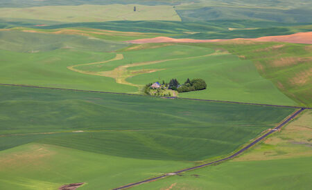 palouse: Farm lands near Palouse