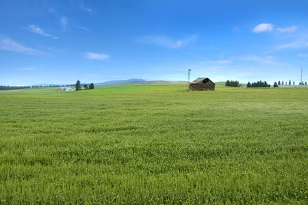 Palouse landscape Stock Photo