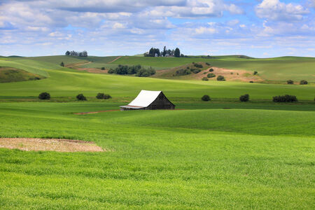 rural community: Farm scene in Washington state Stock Photo