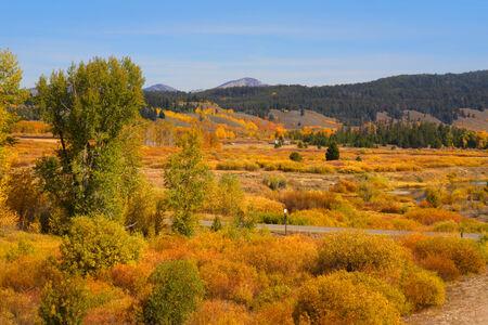 Autumn landscape in Yellowstone photo
