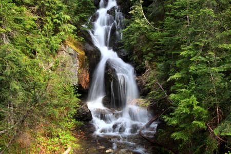 cascade mountains: Mount Rainier falls