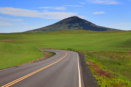 palouse: Beautiful road to Steptoe butte in Palouse