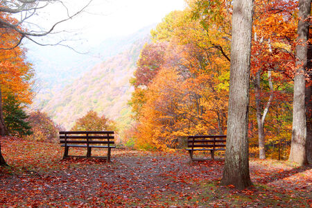treed: Mountain view in autumn with benches Stock Photo