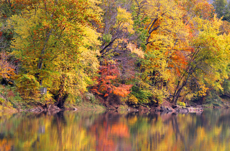 west virginia trees: Reflections of Autumn trees Stock Photo
