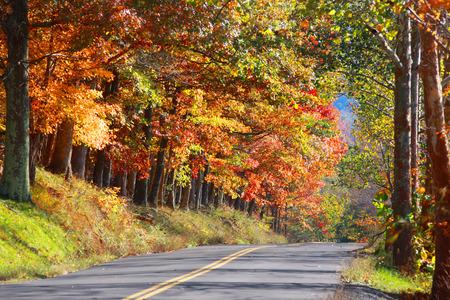 West Virginia rural highway photo