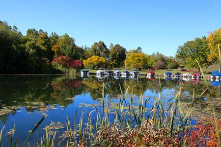Early autumn in Michigan  免版税图像