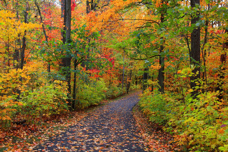 spectacular: Bike trail in autumn time Stock Photo