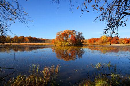 Small island with autumn trees photo
