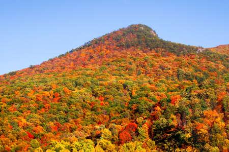 seneca: Seneca rocks peak with colorful autumn time.