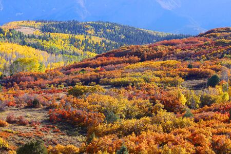 Colorful rolling hills in Colorado