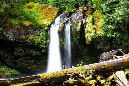 Belle eau tombe à Mount Rainier National Park