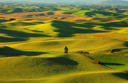 over the hill: Beautiful landscape of Palouse Rolling hills