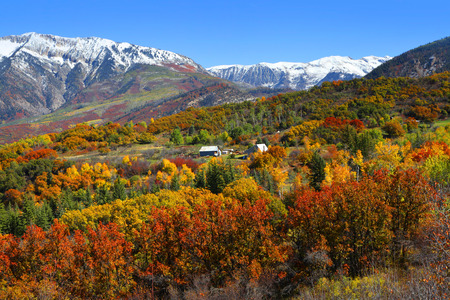 aspen leaf: Autumn landscape in Rocky mountains Stock Photo